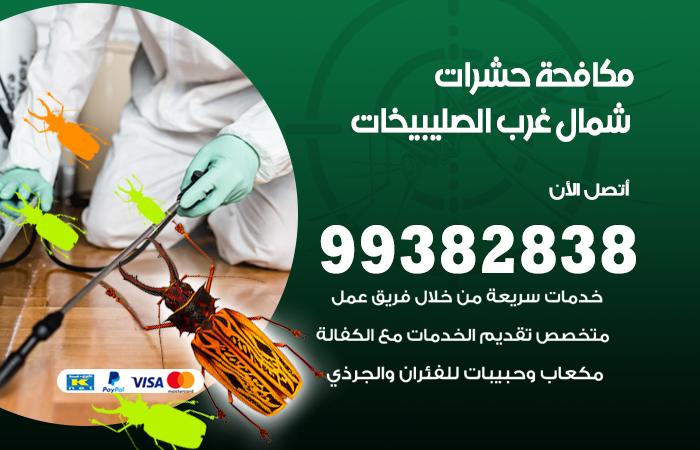 مكافحة حشرات شمال غرب الصليبيخات / 99382838 / أفضل شركة مكافحة حشرات في شمال غرب الصليبيخات