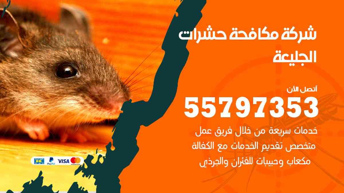 شركة مكافحة حشرات وقوارض الجليعة / 50050647 / رش الصراصيروالبق والفئران