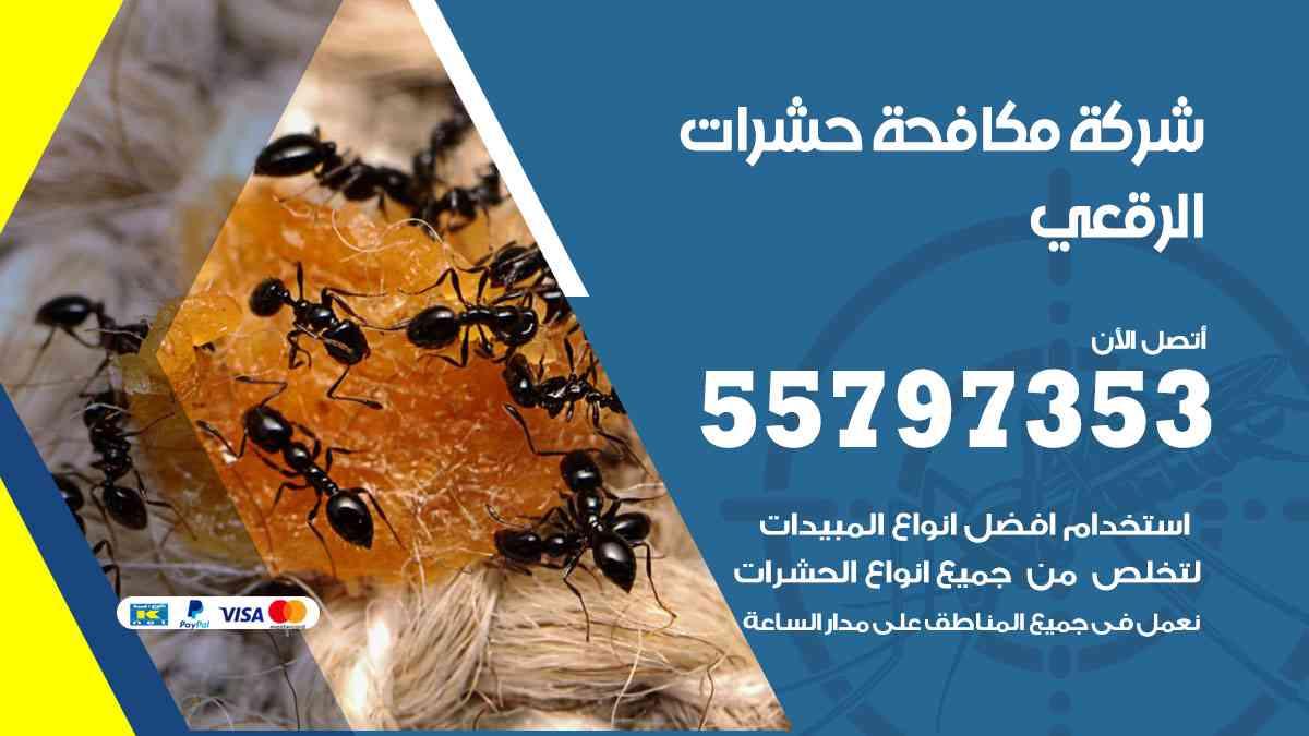 شركة مكافحة حشرات وقوارض الرقعي / 50050647 / رش الصراصيروالبق والفئران