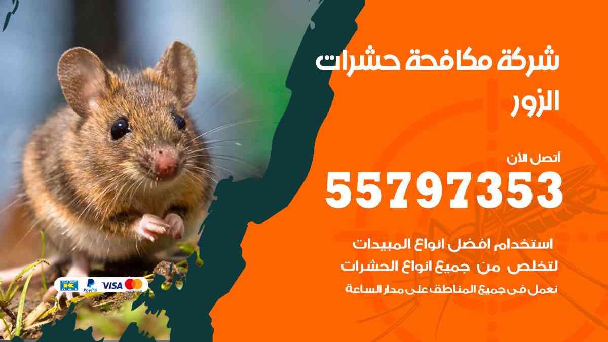 شركة مكافحة حشرات وقوارض الزور / 50050647 / رش الصراصيروالبق والفئران