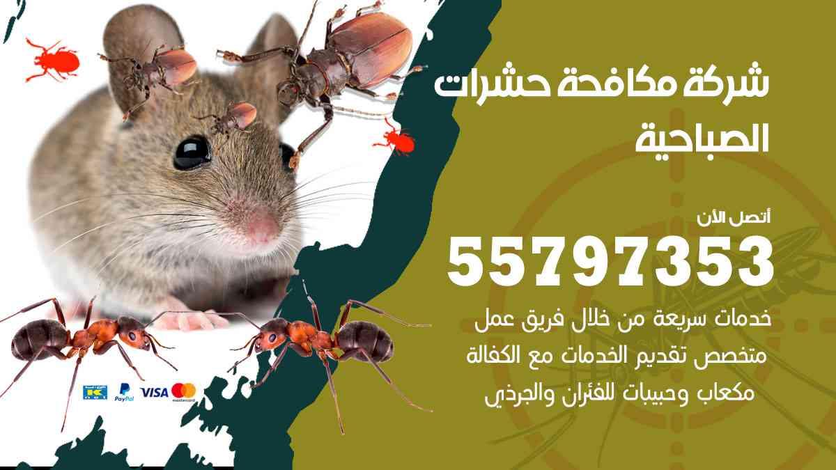 شركة مكافحة حشرات وقوارض الصباحية / 50050647 / رش الصراصيروالبق والفئران