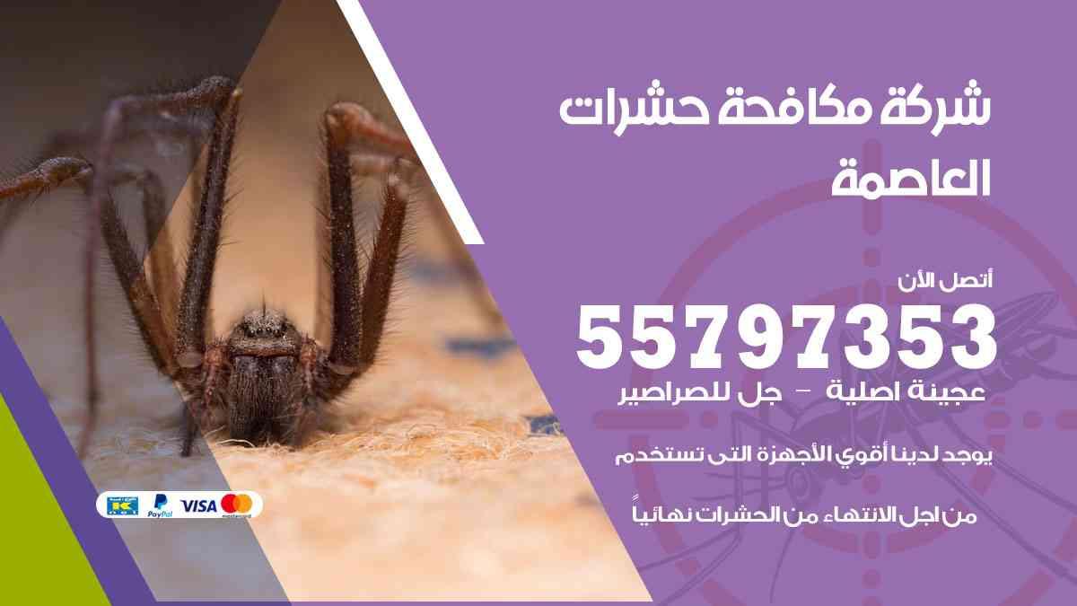 شركة مكافحة حشرات وقوارض العاصمة / 50050647 / رش الصراصيروالبق والفئران