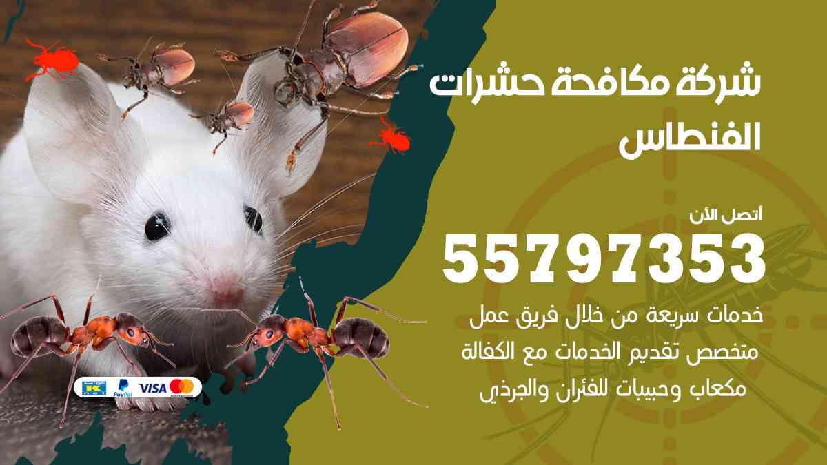 شركة مكافحة حشرات وقوارض الفنطاس / 50050647 / رش الصراصيروالبق والفئران