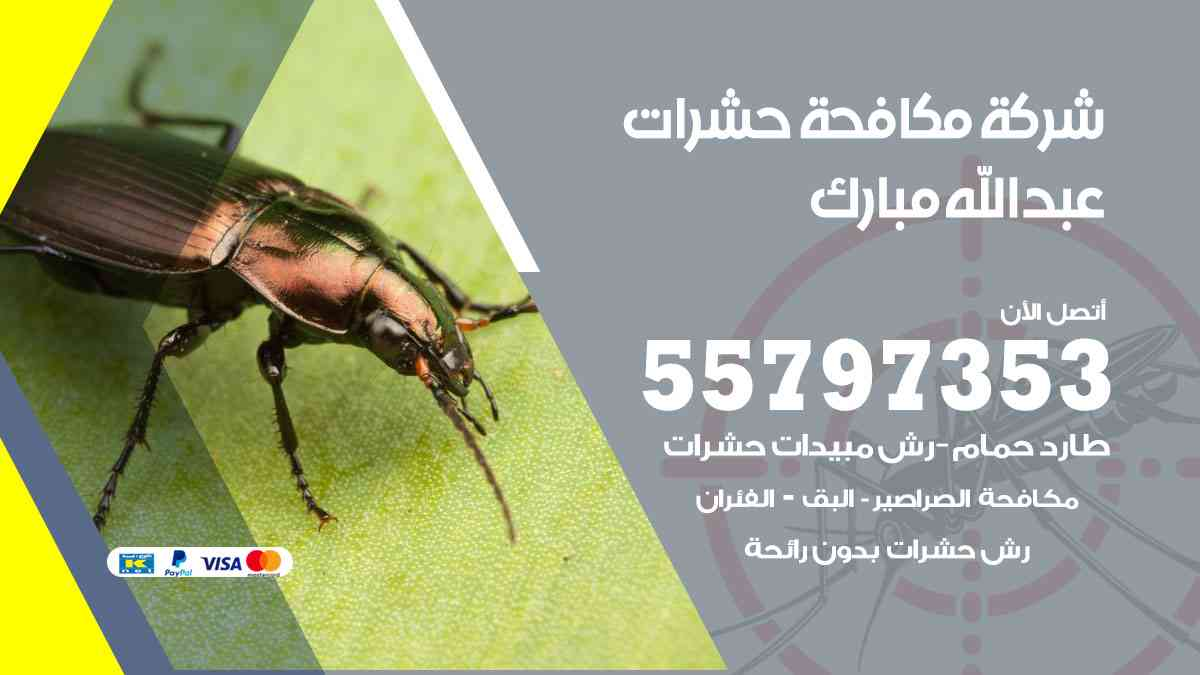 شركة مكافحة حشرات وقوارض عبدالله مبارك / 50050647 / رش الصراصيروالبق والفئران
